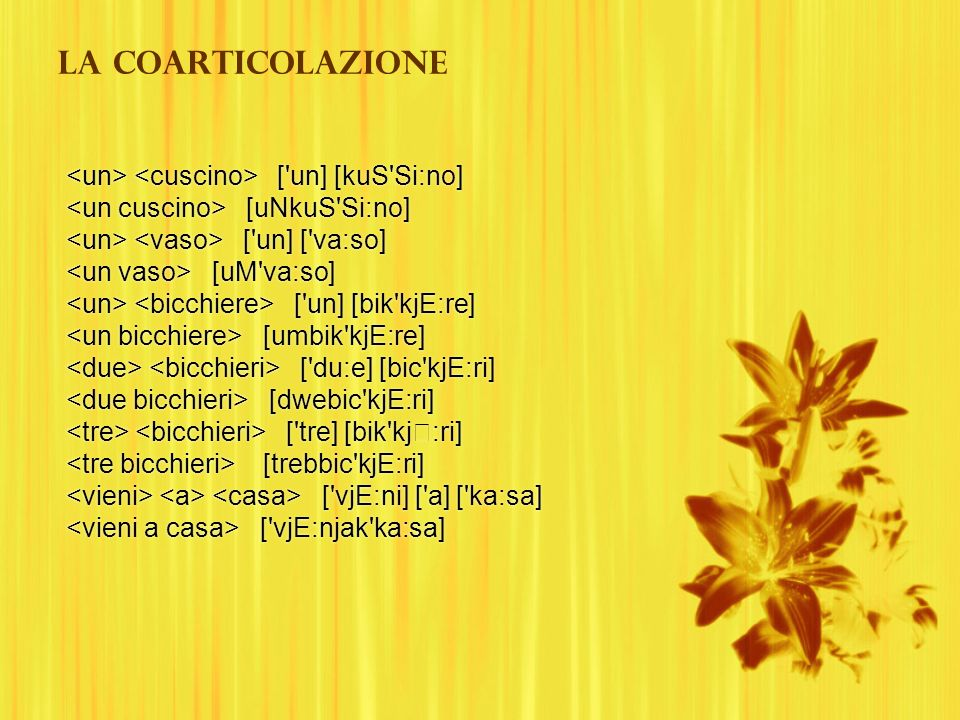La coarticolazione <un> <cuscino> [ un] [kuS Si:no]